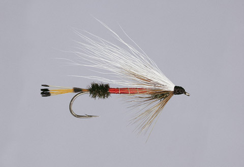 Bucktail Royal Coachman