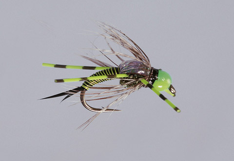 RL Chartreuse Hot Head Copper