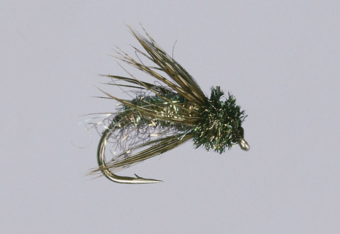 Peacock Ice Caddis