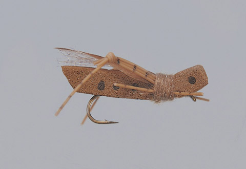 Rainy's Insect Brown Grand Hopper - FM