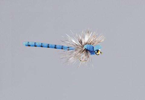 Rainy's Blue Dragonfly - FM