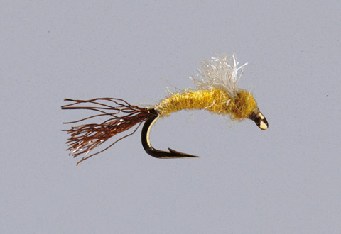 Sulfur Emerger