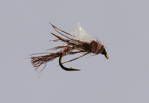 Isonychia Emerger