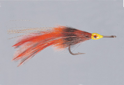 Rainy's Orange Tarpon Fly