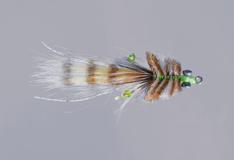 Colby's Tan Mini Corona Toad - WG