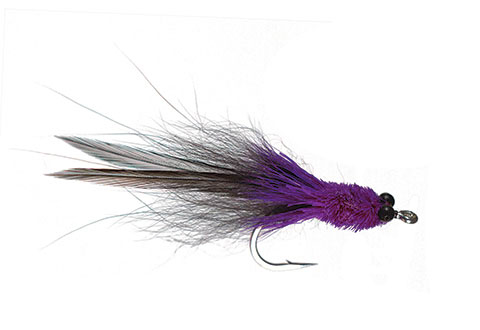 Colby's Sol Tarpon - Black/Purple