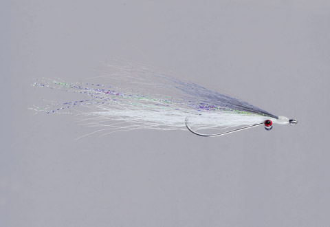 Clouser's Silver Shiner Bendback Clouser