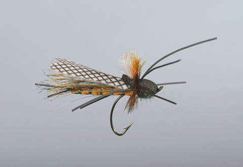 Schiel's Salmonfly Totally Stoned - FM