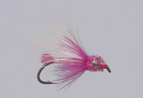 Duddles' White/Pink Steelhead Candy