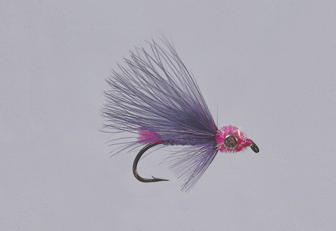 Duddles' Purple Steelhead Candy