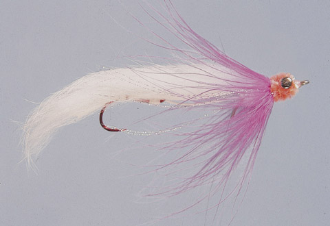 Duddles' White/Pink Ultimate String Leech - A