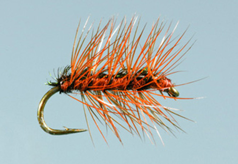 Ed's Crackleback - Spider Brown