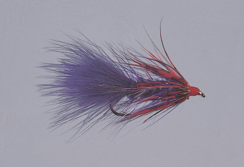 Ingersoll's Purple/Red S.T.S. Series Bugger -WTD