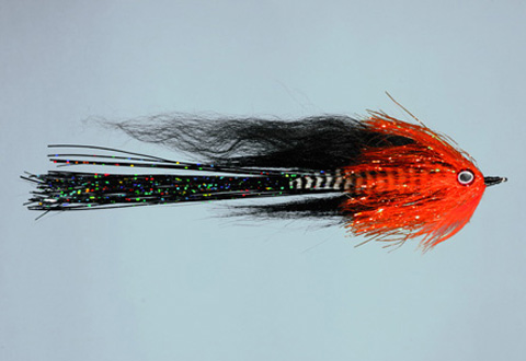 Jared's Outlaw - Orange/black