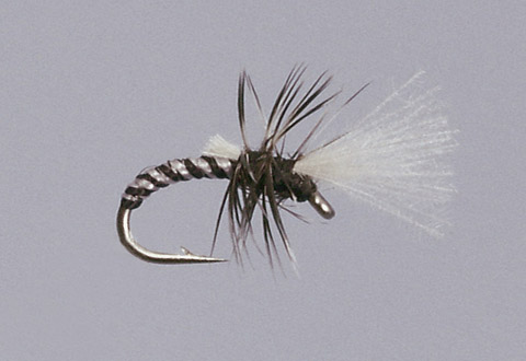 Haslam's Death Midge Emerger