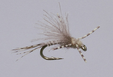 Haslam's Blue Winged X Emerger