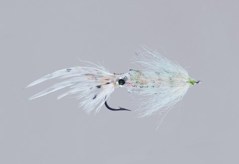 B. Murphy's E-Z Squid - Speckle
