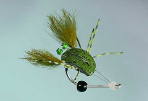 Meade's Gutless Crab - Olive