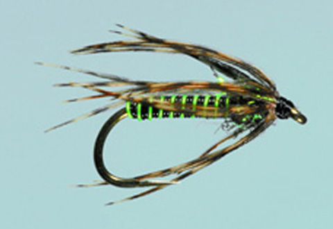Dally's Tailwater Soft Hackle - Caddis Green