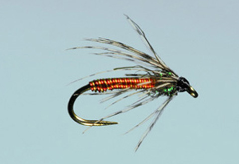 Dally's Tailwater Soft Hackle - Orange