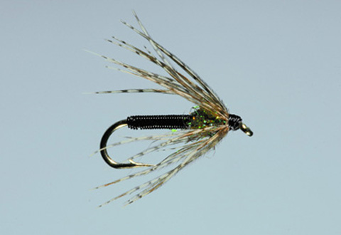 Dally's Tailwater Soft Hackle - Black