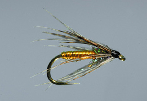 Dally's Tailwater Soft Hackle - Yellow