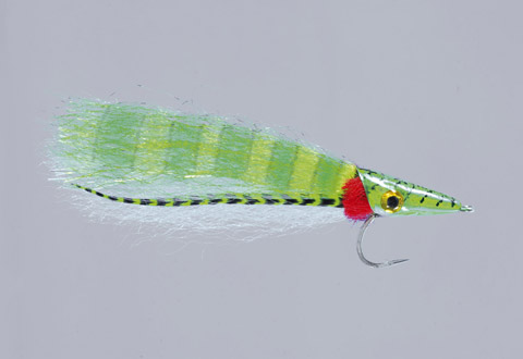 Salvini's Chartreuse Butterfly Junior