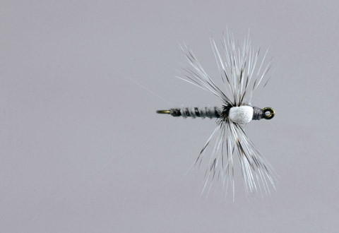 Ted's Gray Drake Spinner