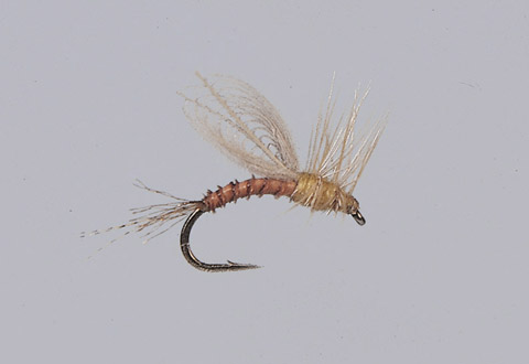 Smith's Emerger PMD