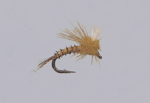 Smith's BWO EZC Emerger
