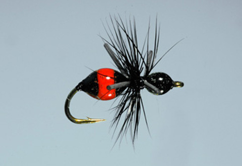 Steeves' Attract-Ant - Blk/Red