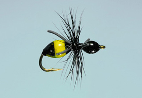 Steeves' Attract-Ant - Blk/Yellow