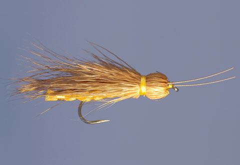 Whitlock's Adult Stonefly Golden