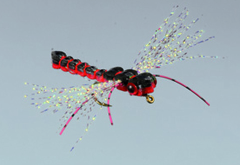 Whitlock's Gorilla Damsel/Dragon, Black/Red - FM